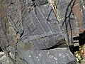 Magnetite banded iron formation (Soudan Iron-Formation, Neoarchean, ~2.69 Ga; Rt. 169 roadcut between Soudan & Robinson, Minnesota, USA) 1 (19035471992).jpg