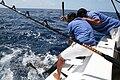 Maldivesfish3.jpg