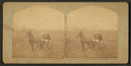 Man in a buggy. Spirit Lake, Iowa, by Frank F. Roblin.png