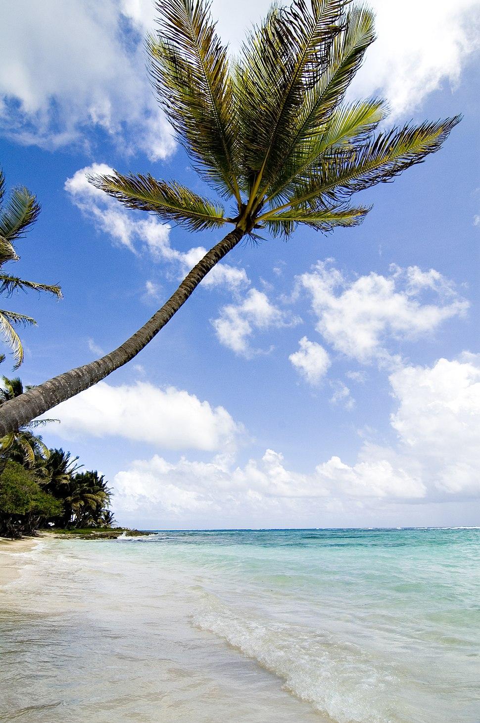 Marie Galante - on the beach (407689602)