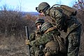Marines Prepare for Platinum Lion with Live Fire Exercise 150106-M-KK554-895.jpg
