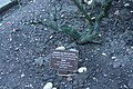 Marker for the ashes of Mark Feld (Marc Bolan) and his parents, Golders Green Crematorium.jpg