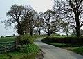 Marston Lane - geograph.org.uk - 1258764.jpg