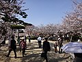 Marunouchi, Matsuyama, Ehime Prefecture 790-0008, Japan - panoramio (56).jpg