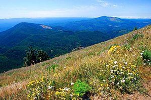 Marys Peak - View from a meadow atop Marys Peak.