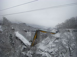 2008 in Japan - A bridge which collapsed during the 2008 Iwate–Miyagi Nairiku earthquake