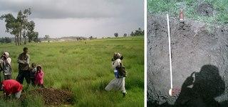 Soil in Saisi Tsaida Imba