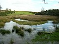 Meikleholm Loch - geograph.org.uk - 287573.jpg