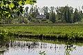Merwelanden, Dordrecht (33978445808).jpg