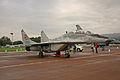Mikoyan MiG-29UBS Fulcrum B 2 (7568944932).jpg