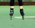 Mirage inline skates.png