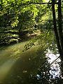 Mittelfranken (29625694913).jpg