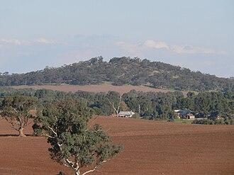 Moculta, South Australia - Image: Moculta farmland