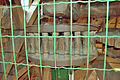 Molen Grenszicht, Emmer-Compascuum maalkoppel steenspil (3-.jpg