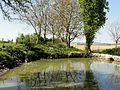 Montépilloy (60), hameau de Boasne, mare.jpg