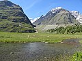 Mont Fortin, Val Veny (45746260811).jpg