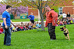 Month of Military Child MWD demonstration 150414-F-OH119-216.jpg