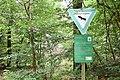 Mooskiefernwald von Dudenhofen01.jpg