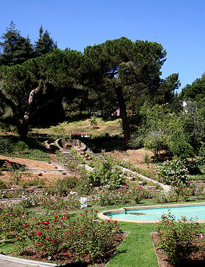 Morcom Rose Garden - Image: Morcom rose garden