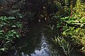 Moscow, Chermyanka River around Chermyanskaya Street (30799268974).jpg