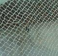 Mosquito,net,inside,TamilNadu404.jpeg