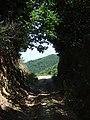 Mount Athos- shady hollow way.jpg