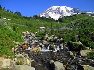 Mount Rainier National Park - Mount Rainier from above Myrtle Falls