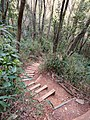 Mountain trail for going to Sarubami castle observation tower.jpg
