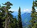Mt. Baker-Snoqualmie National Forest (9292823046).jpg