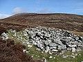 Mt Leinster - geograph.org.uk - 1222009.jpg