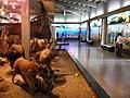 Museo Universitario-UdeA-Medellin.JPG