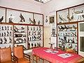 Museo ornitologico - Interior - Mazara.jpg
