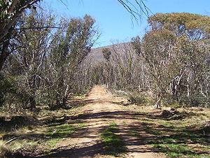 Namadgi National Park - Image: Namadgi National Park walking trail