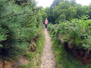 English: Narrow path