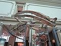 National Museum of Natural History, Washington, D.C. (2013) - 01.JPG