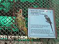 National Zoological Park, Delhi 10.jpg