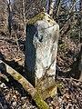 Neu-Belgisch (Preußisch)-Luxemburgischer Grenzstein Nr. 65 (zwei) (5).jpg