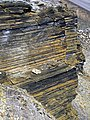 New Albany Shale (Upper Devonian; MacDonald Knob Outcrop, Bullitt County, Kentucky, USA) 9 (30962935147).jpg