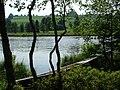 Notzenweiher - panoramio (1).jpg