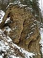 Ožkų pečius - panoramio (1).jpg