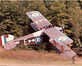 ORA's Sopwith Dolphin in flight.jpg
