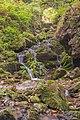 Oberried (Breisgau) - Einmündung des Hofrunderbachs in den Buselbach unterhalb des Steinwasen-Wasserfall Bild 2.jpg