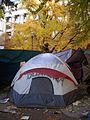 Occupy Portland November 9 tent.jpg