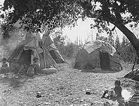 Ojibwe wiigiwaam and Dakota-style tipis, White Earth 1928