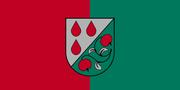 Olaine Flag