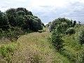 Old Muirkirk Branch trackbed, Cronberry, East Ayrshire, Scotland.jpg