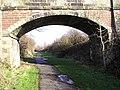 Old Rail Bridge - geograph.org.uk - 125233.jpg