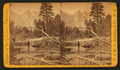 On the Merced River, Cathedral Rocks in the distance, by E. & H.T. Anthony (Firm).png