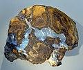 Opal-rock hg.jpg