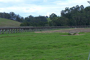 Orbost - The Orbost viaduct once carried freight trains across the alluvial flats, stopping across the river from the centre of Orbost.